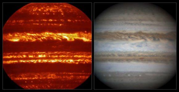 leigh Jupiter